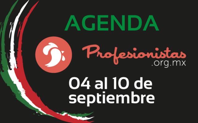 Agenda profesionistas septiembre