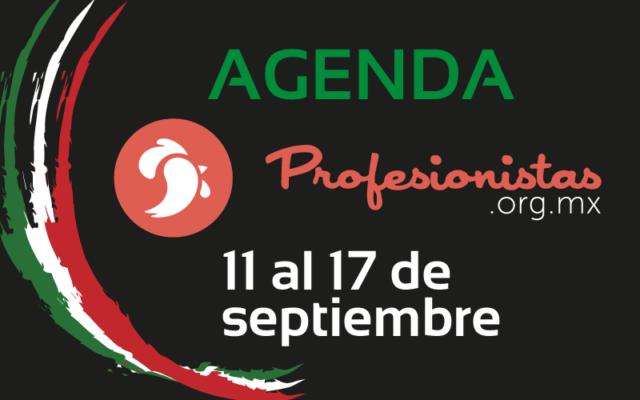 agenda 11 al 17 de septiembre 2017