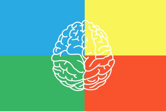 interpretar test de dominancia cerebral
