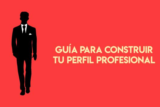 perfil profesional