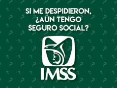 despidieron seguro social IMSS